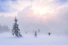 Extremer Abenteuerwanderer in den Bergen Stockbild