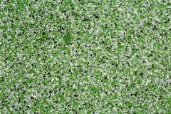 Extremer Abschluss oben der Epoxidboden- oder Wandbeschichtung des dekorativen Quarzsandes mit den grünen, grauen, weißen und sch lizenzfreie stockfotos