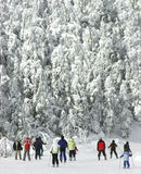 Extremer kalter Abfahrtskilauf 2 Stockbilder