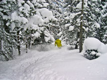 Extremer Skifahrer Stockfotos