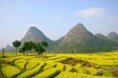 A extremidade da violação, Guizhou China miliampère Kai Fotografia de Stock