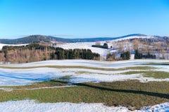 Extremidades do inverno Fotos de Stock Royalty Free