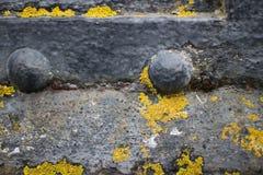 Extremo cercano para arriba de remaches y de liquenes en el lado de un cañón viejo Imagen de archivo