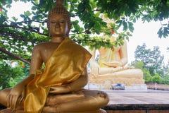 Extremo del budista prestado Foto de archivo libre de regalías