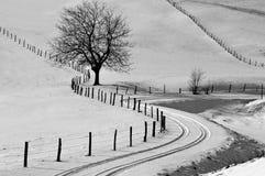 Extremo del camino Fotografía de archivo