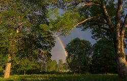 Extremo del crisol de oro del leprechaun de Rainbow Foto de archivo