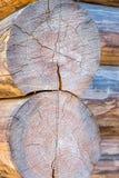 Extremo paralelo de la casa de la cabaña de madera del pino de dos registros del primer agrietado del tronco de la construcción t fotografía de archivo