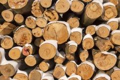 Extremo redondo de la madera. Fotos de archivo