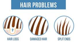 Extremos de fractura del cuidado del cabello libre illustration