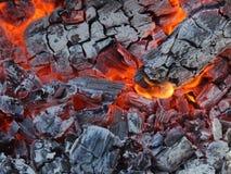 Extremt closeupfoto för varmt levande kol Royaltyfria Bilder