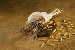 Extrude, wheat and penne Royalty Free Stock Photos