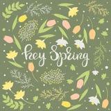 Ey primavera - vector floral de la tarjeta libre illustration