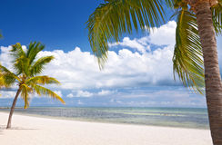 Ey West Florida, beautiful summer beach landscape Stock Photos