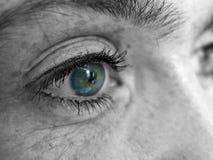 eye девушка s стоковые фотографии rf