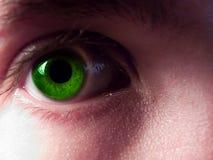 eye зеленый цвет Стоковые Фотографии RF