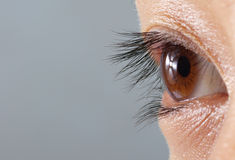 eye человек Стоковые Фотографии RF