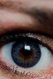 Eye. Blue and brown eye with color lense stock photo