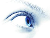 The eye. The big,blue women eye Royalty Free Stock Images