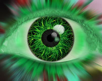Eye. Illustration of an Eye with a grass Royalty Free Stock Photo