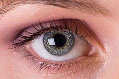 Eye. Bright eye of one attractive young woman Royalty Free Stock Image