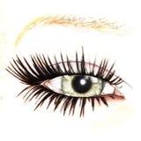 Eye. Digital visualization of an eye Stock Image