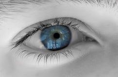 Free Eye Royalty Free Stock Images - 12705179