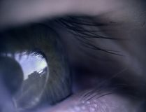 Eye. Macro eye stock photos