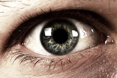 Eye Stock Images