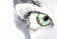 Eye. Painting of beautiful human eye Royalty Free Stock Photo