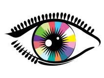Eye. Royalty Free Stock Image