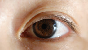 Eye. It is a close-up view of a chinese girl eye Stock Photo