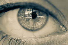 The eye. Beautiful eye of a girl close-up stock photos