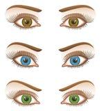 Eye. On a white background vector illustration