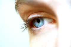 Eye. An eye of a woman Royalty Free Stock Photo