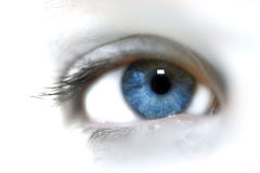 Eye. An eye of a woman Royalty Free Stock Photography