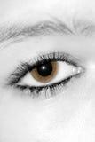 Eye Stock Photos