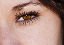 Eye Royalty Free Stock Images