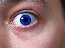 Eye. Scarry closeup of a human eye stock image
