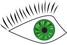 Eye. Vector illustration of green eye design Stock Images