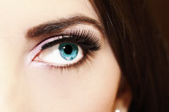 Eye. Close up of a woman blue eyes Stock Image