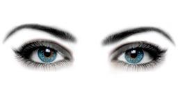 Free Eye Stock Image - 20706021