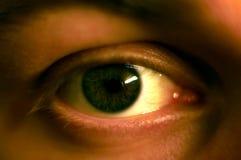An eye. Closeup of a mans greenish eye Stock Photography