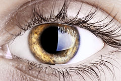 Eye Royalty Free Stock Photos