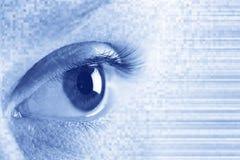 Eye. The close up of eye. Blue background Royalty Free Stock Image