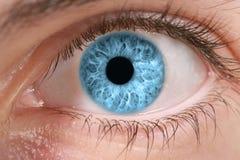 Eye. Very closed detail of blue eye Stock Image