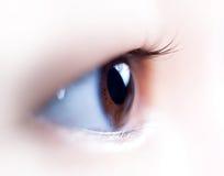 Free Eye Royalty Free Stock Photography - 2686137