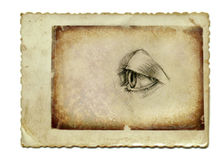 The eye 3 Royalty Free Stock Photo