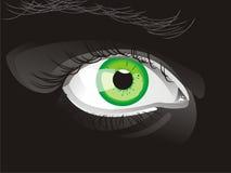 Eye. Black eye, vector Eps illustration Royalty Free Stock Images