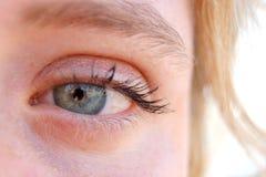Free Eye Royalty Free Stock Photos - 3771178