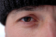 The eye. Men oye Stock Photos